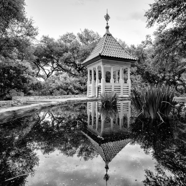 Zilker Botanical Garden Gazebo in Black and White